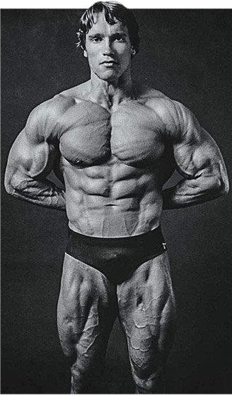 Arnold schwarzenegger blueprint trainer mass training overview then with no rest keep repeating this process reduce your weight lift reduce again lift and continue until youre down to the bar malvernweather Images