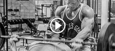Arnold schwarzeneggers blueprint to mass mass training video malvernweather Gallery