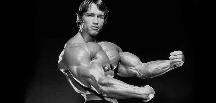 Arnold schwarzenegger blueprint trainer mass training arnold die malvernweather Image collections