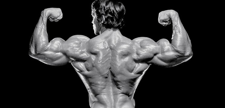 Bodybuilding schwarzenegger arnold workout on instagram arnold arnold schwarzeneggers malvernweather Image collections