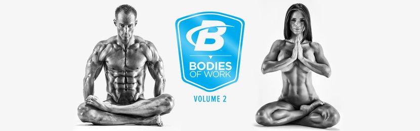 Bodies Of Work: Volume 2
