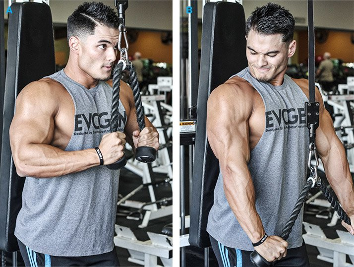 Best Way To Build Your Biceps