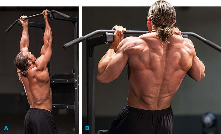 Can You Build Muscle On Bodyweight Chin Ups