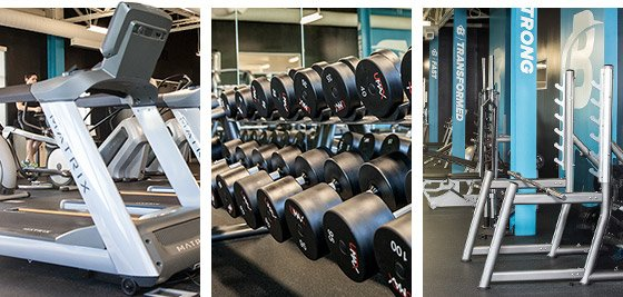 There are many options you need to think about when deciding what gym would suit you best. You need to think about what type of workout you want to get and go from there.