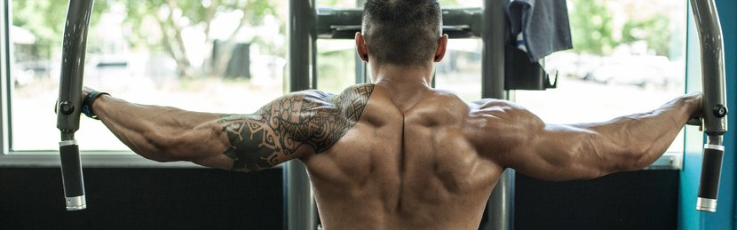 Jake Alvarez's Shoulder-Gains Workout
