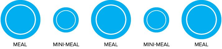 You Will Be Switching From The Standard Three Meals A Day To Three Primary Meals And 2 Mini Meals