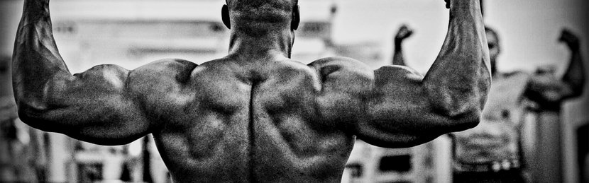 Your Workout For A Strong And Stacked Back