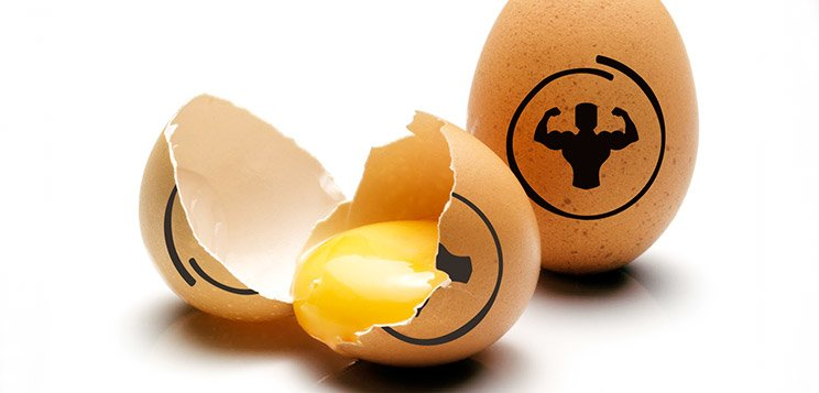 Protein Cracked: Making A Case For The Egg