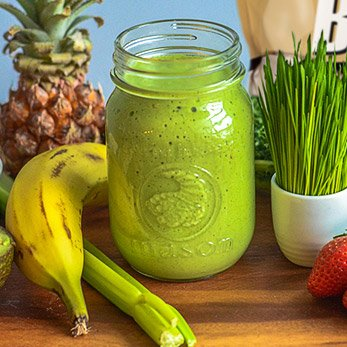 Healthy Smoothie Recipes & Protein Shakes