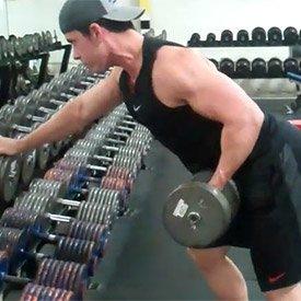 Dumbbell single-arm reverse-grip row