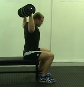 Seated Dumbbell Power Clean