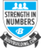 strength in numbers logo