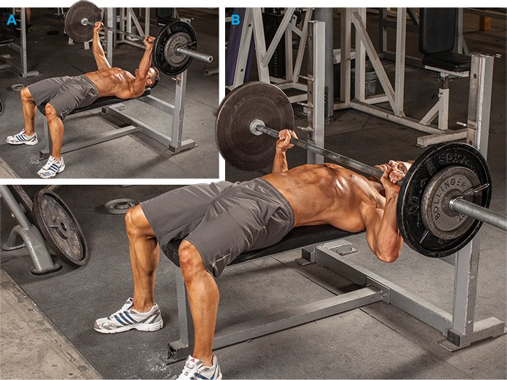 chest best barbell bench press major muscles worked pectoralis major ...