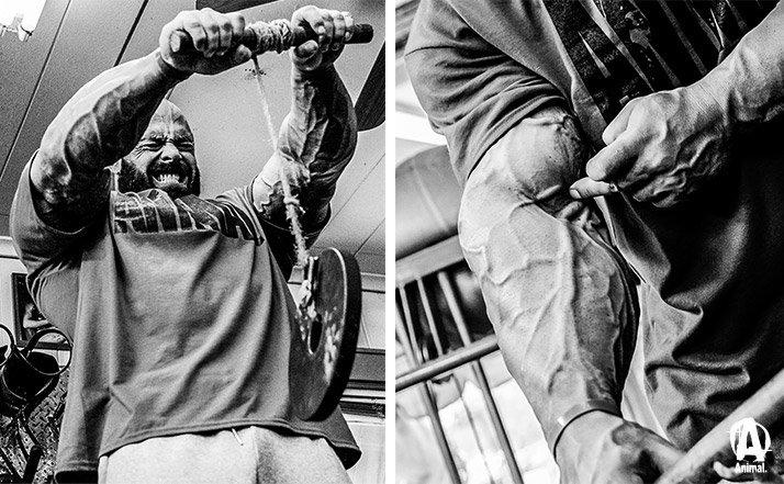 Image result for frank mcgrath forearms