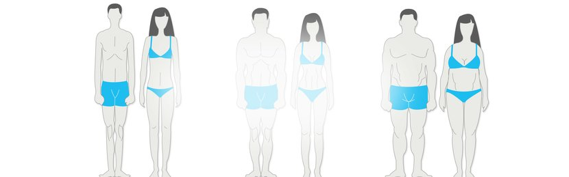 What Is Your Body Type? Results.