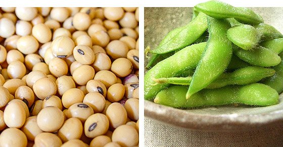 Some research suggests that regularly eating soy-based foods may lower cholesterol, prevent breast and prostate cancer, and aid in weight loss.