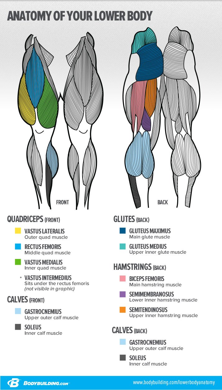 Communication on this topic: How to Maximize Your Bodybuilding Workout, how-to-maximize-your-bodybuilding-workout/
