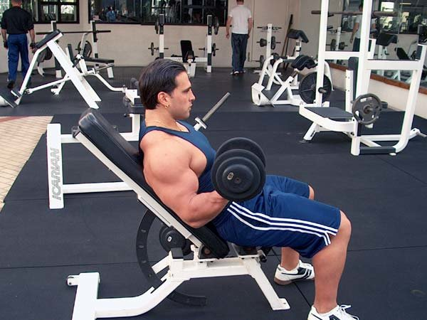 Curl The Arm Up In An Arcing Motion Being Conscious Of Contracting Your Biceps During Entire Range