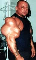 The Synthol