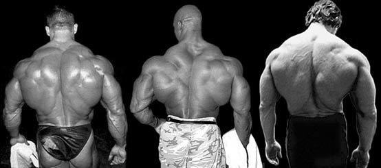 Which Bodybuilder Do You Admire The Most?