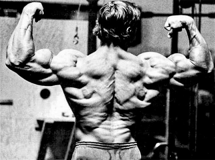 When he began competing at the elite level, Arnold's back wasn't as imposing as his mammoth chest and arms. By employing basic, multi-joint movements to target all areas of his back, he was able to bring it up.