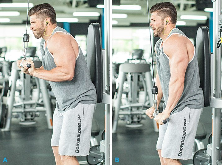 The 10 Best Muscle-Building Triceps Exercises!