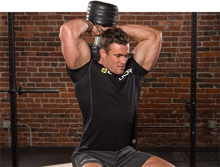 Seated Overhead Dumbbell Extension