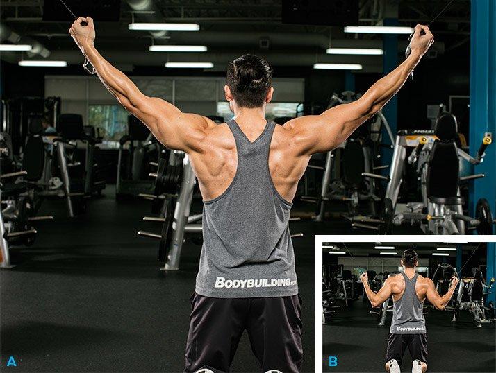 6 best lat exercises youre not doing graphics kneeling isolateral cable pulldown - 4 động tác kéo tạ cho cơ lưng và bắp tay sau săn chắc