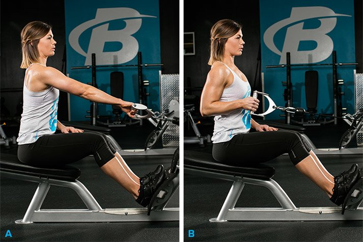 6 best lat exercises youre not doing graphics single arm cable row - 4 động tác kéo tạ cho cơ lưng và bắp tay sau săn chắc