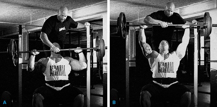 Seated Front Press