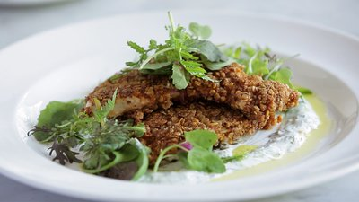 Oat-Crusted Chicken With Lemon Yogurt Sauce!