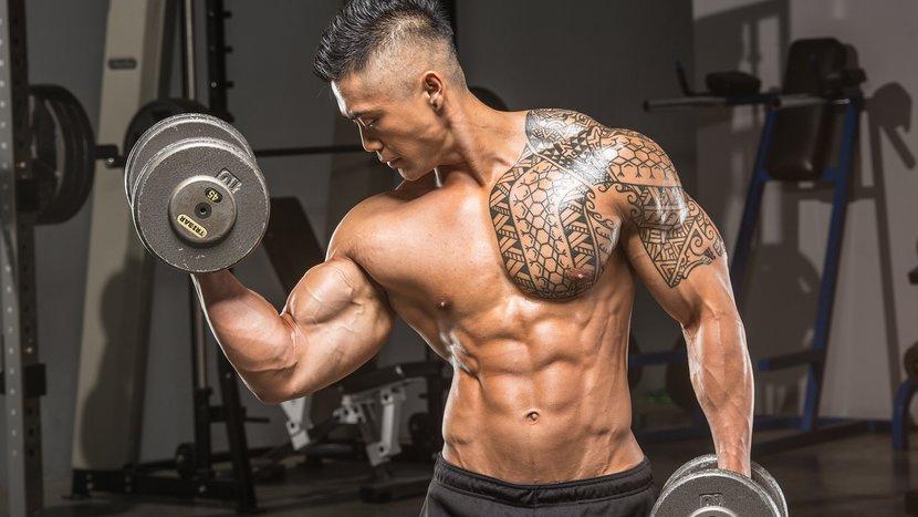 5 Arm-Blasting Workouts - A Beginner's Guide!
