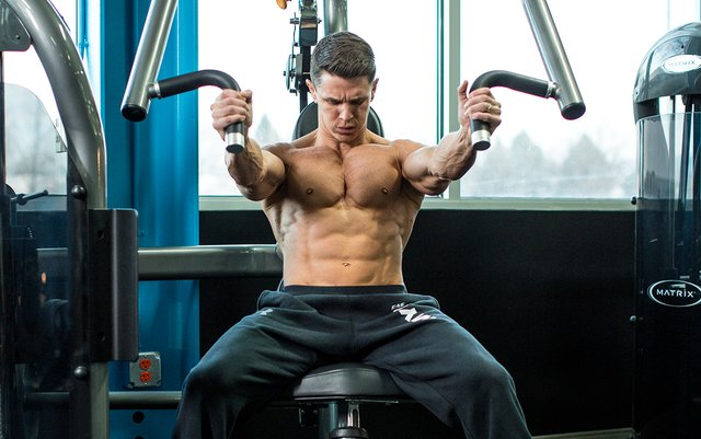 best muscle building workout pdf