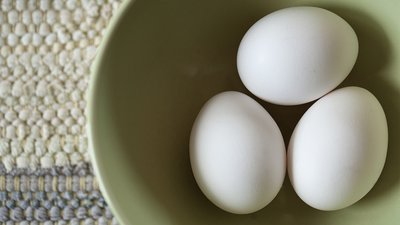 EGGS-actly What You Need To Build Muscle!