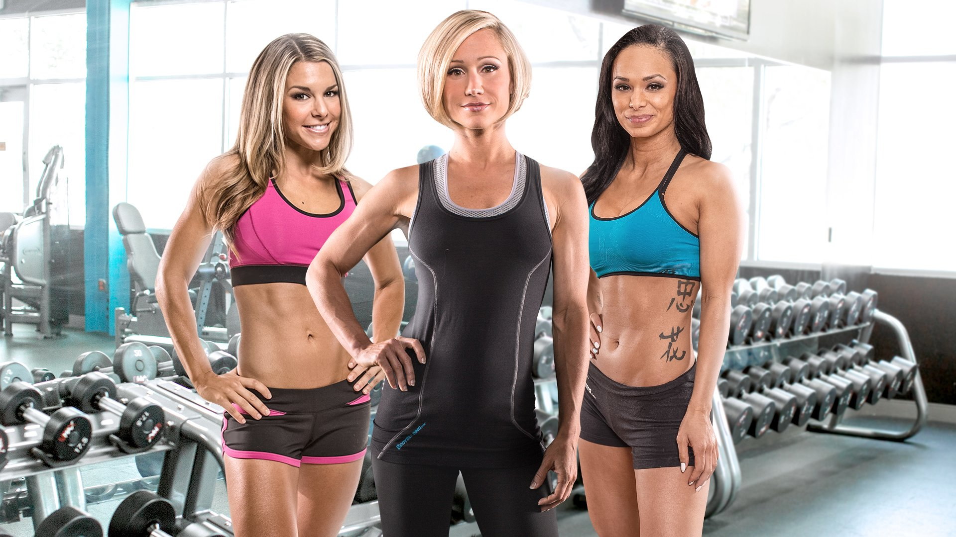 The Female Training Bible Everything You Need To Get The