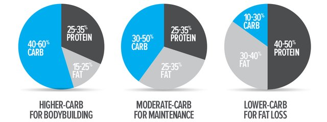 Macros for muscle growth and fat loss