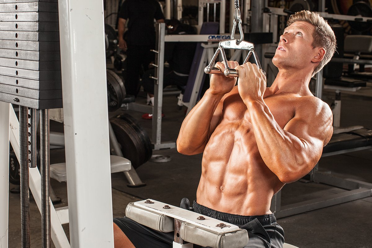 Muscle Building 21