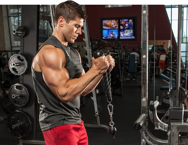Best Exercises For Building Strengthening And Toning The Chest Muscles Guys