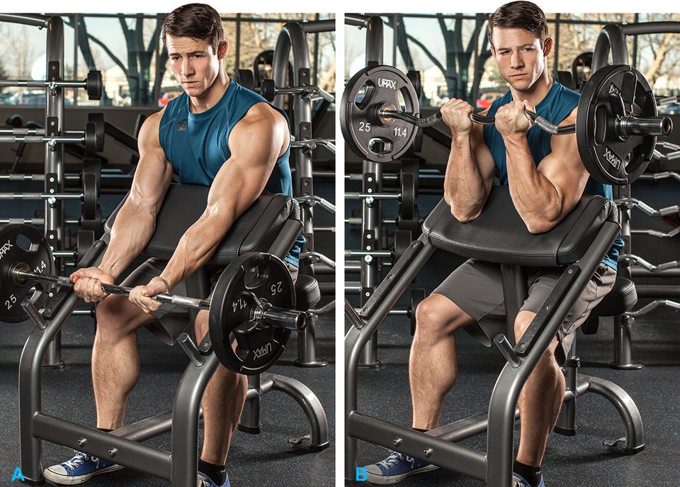how to build biceps at home fast without weights