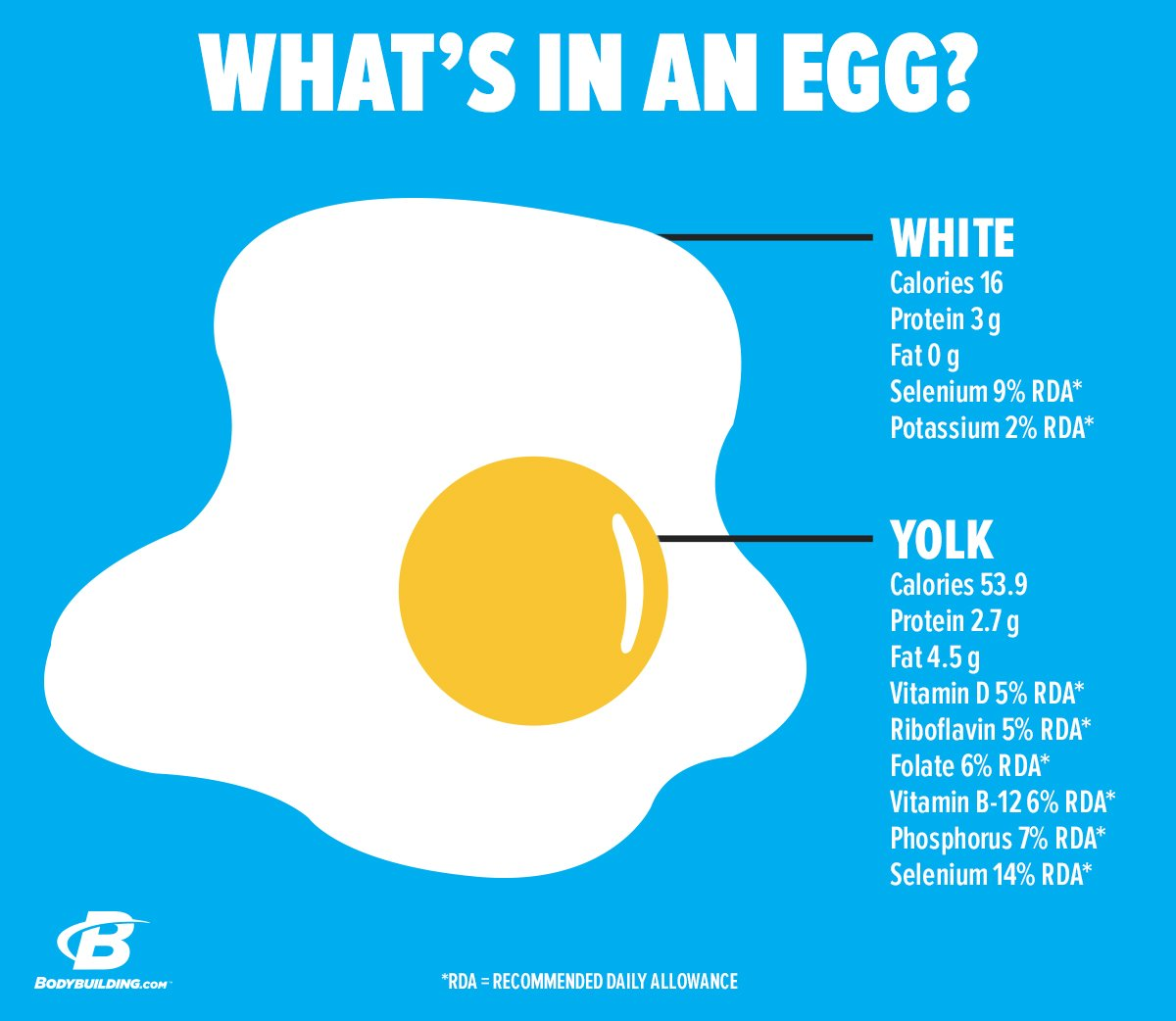 Egg Yolk Fat 41