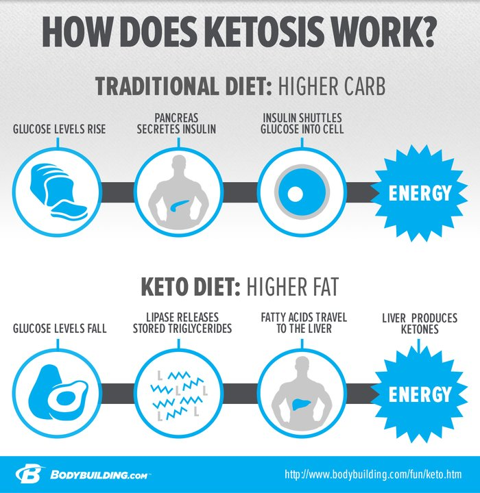 Understanding Carbohydrates and Ketosis by Bodybuilding.com