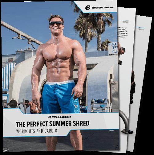 Summer Shred