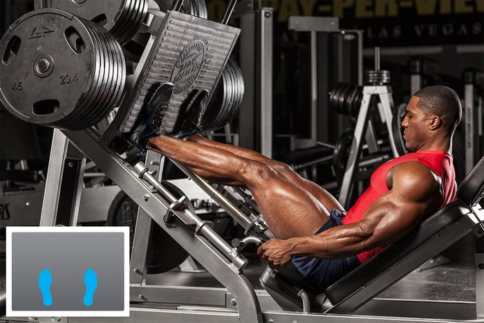 Image result for build muscle on leg press