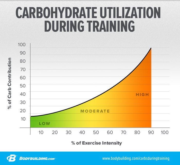 Carbohydrate Utilization During Training line graph