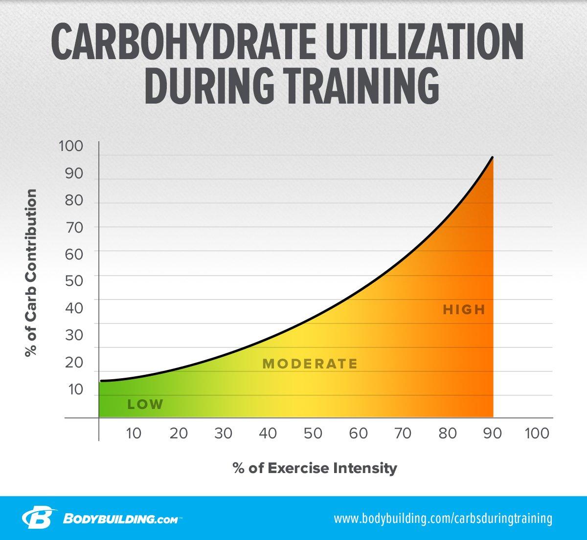 Resultado de imagen para carbohydrates fuel source