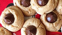 CHOCOLATE PEANUT BUTTER PROTEIN BLOSSOMS