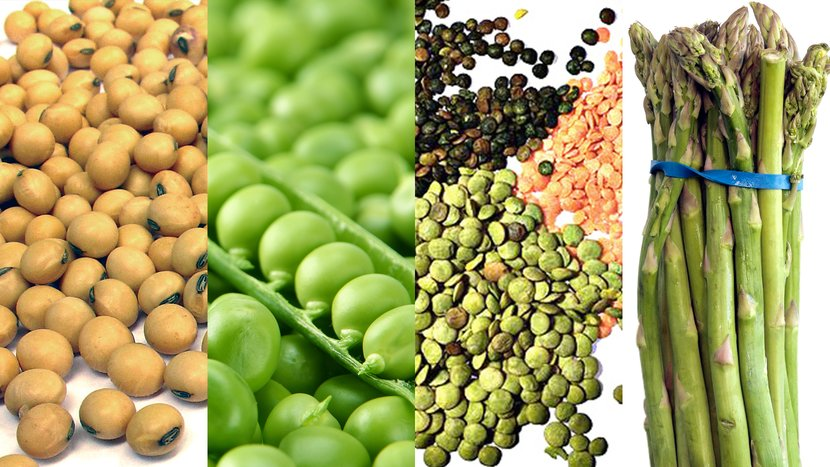 Which Vegetables Contain Protein 8 high protein vegetables workwithnaturefo