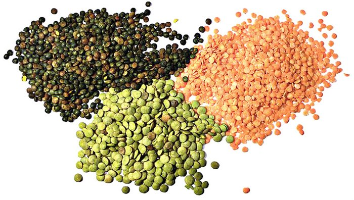 Which Vegetables Contain Protein 8 high protein vegetables lentils are also a great source of dietary fiber and contain a high amount of the micronutrients folate thiamin phosphorus and iron workwithnaturefo