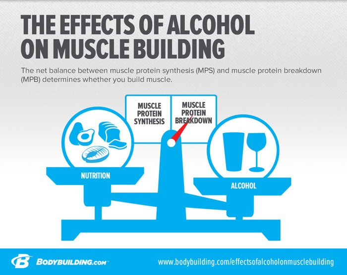 How does alcohol affect muscle growth