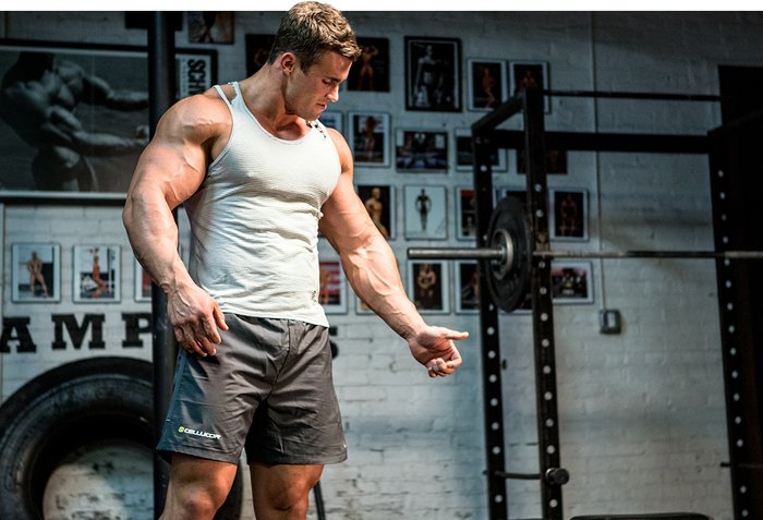 Image result for bodybuilding big arms